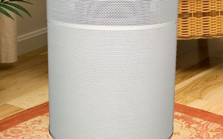 Airpura C600 air purifier for smoke