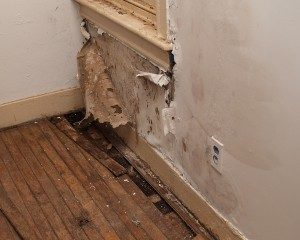 Humidity in Home, mold