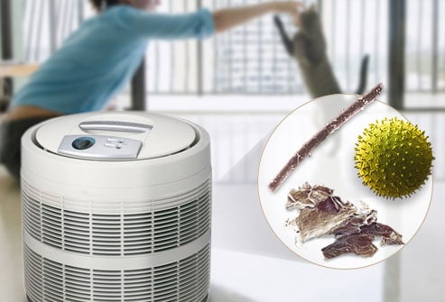 10 questions about hepa air purifiers that you need to know - Air Filter Home