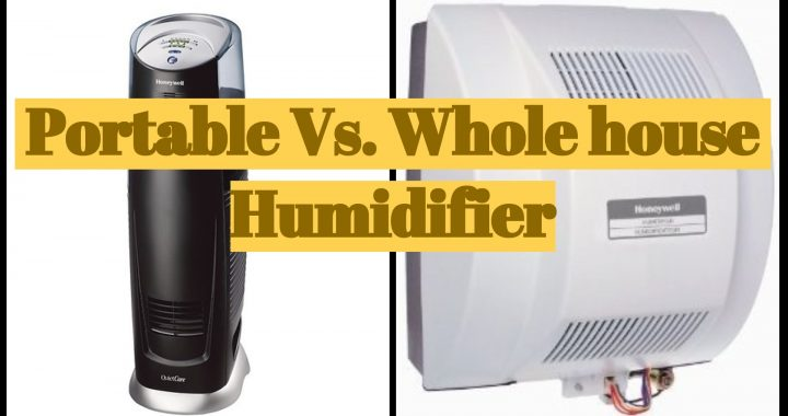 Portable vs Wholehouse humidifier review