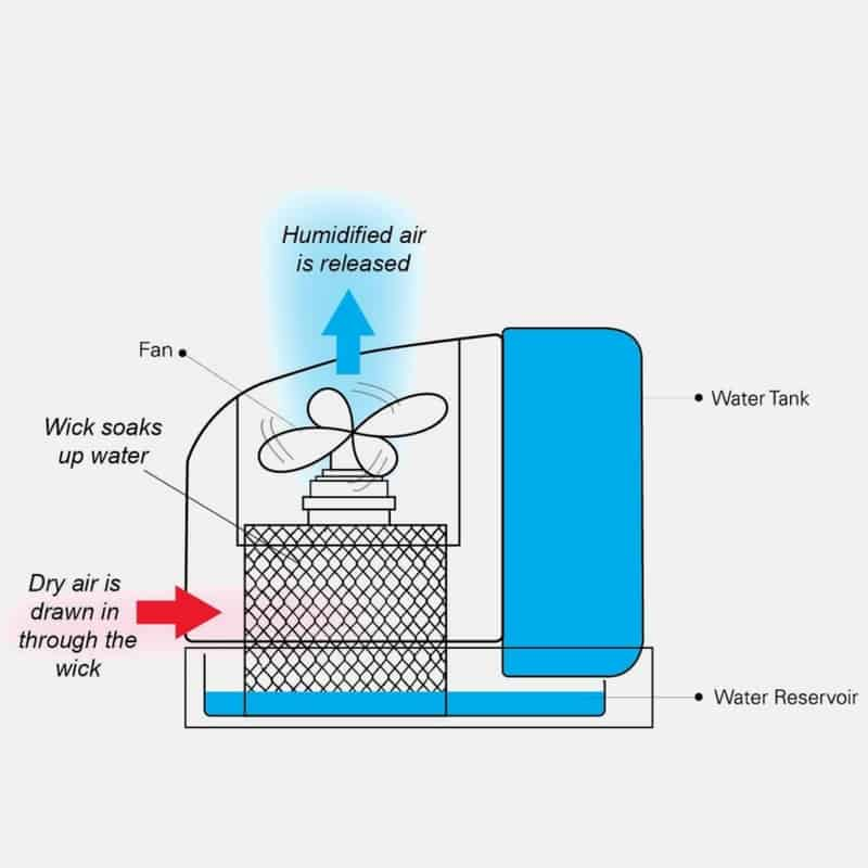 Evaporative Cool Mist Humidifiers