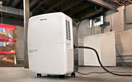 Best Basement Dehumidifier
