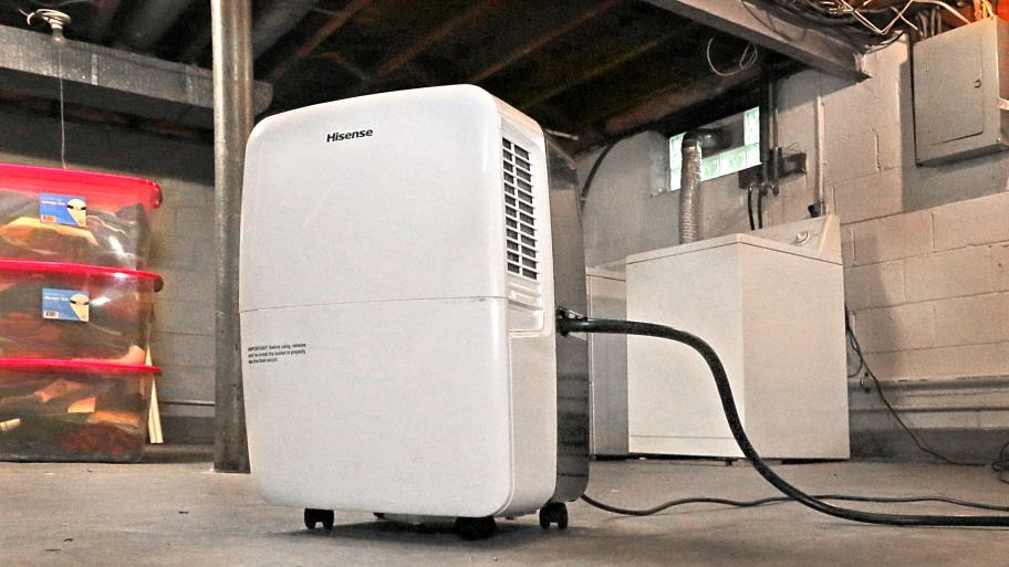 Best Basement Dehumidifier Buying Guide