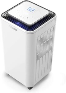 Eurgeen Portable Dehumidifier