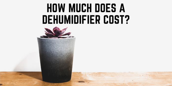 How Much Does A Dehumidifier Cost
