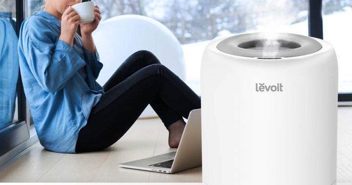 Levoit Dual 100 Ultrasonic Top-Fill Cool Mist 2-in-1 Humidifier