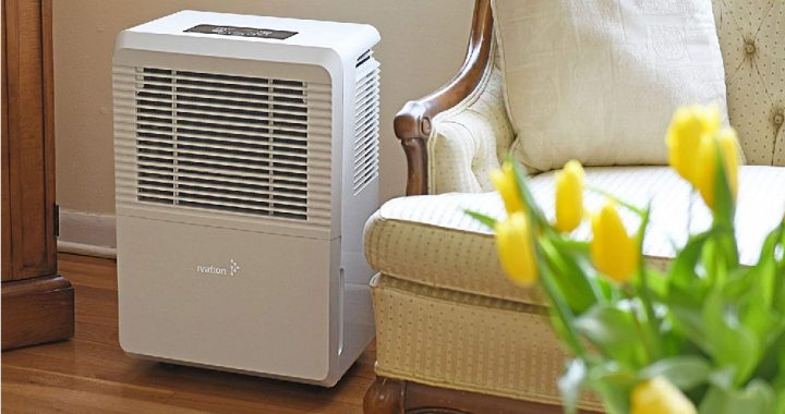 Top 5 50 Pint Dehumidifier
