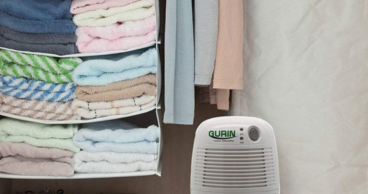 Best Thermo Electric Dehumidifier
