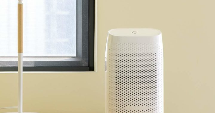Six by Six Mini Electric Home Dehumidifier Review