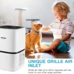 Okaysou AirMic4S Air Purifier Review