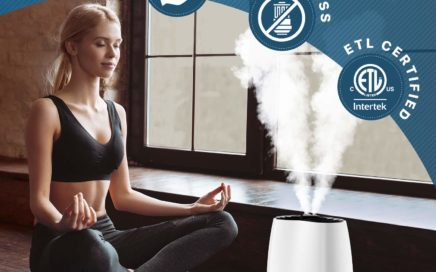 Everlasting Comfort Ultrasonic Cool Mist Humidifier (6L) with Essential Oil Tray Review