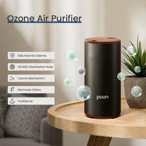 Puuri Air Purifier Negative Ion Generator Review