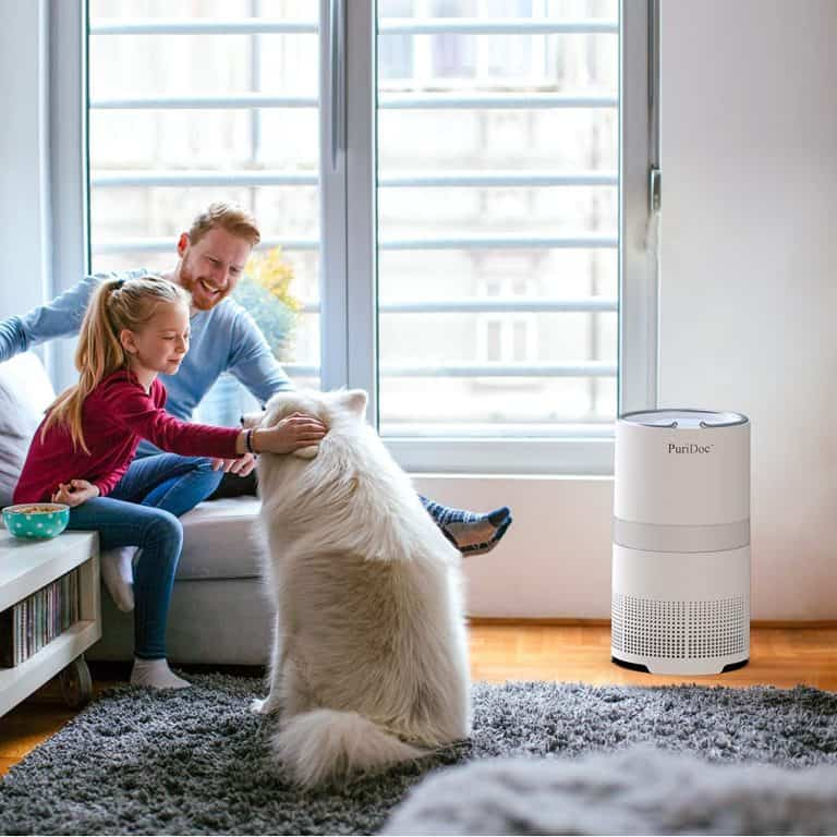 Best Air Purifier for Bacteria and Viruses | Reviews and Buying Guide