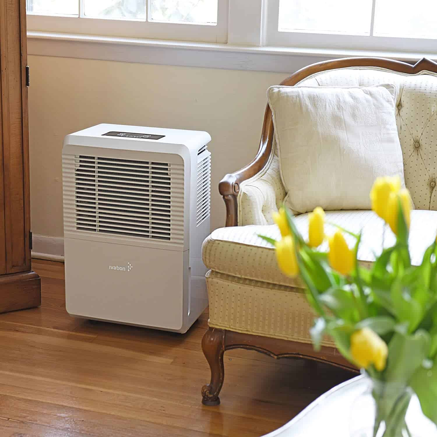 Top 12 Most Energy Efficient Dehumidifiers