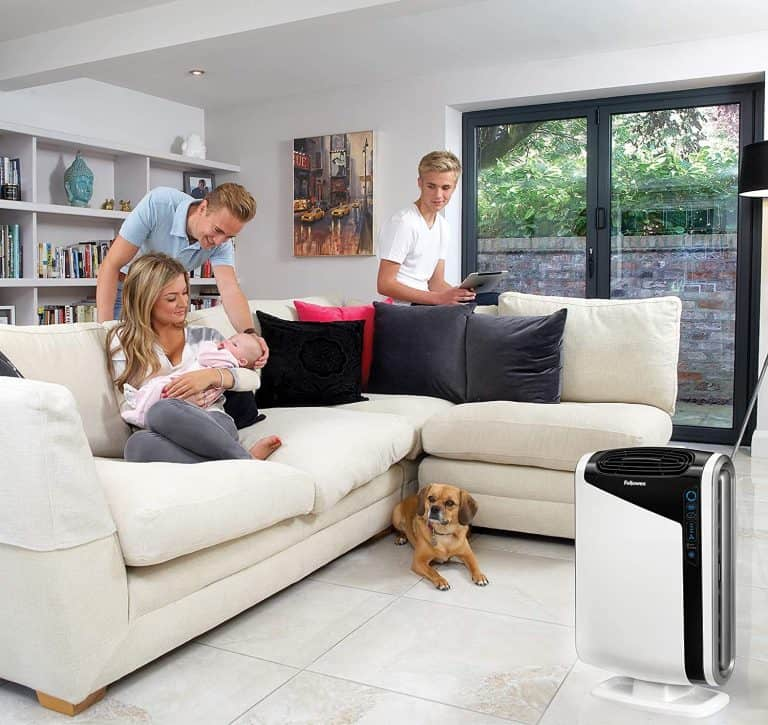 Top 8 Best Air Purifiers for Basements Reviews & Buying Guide